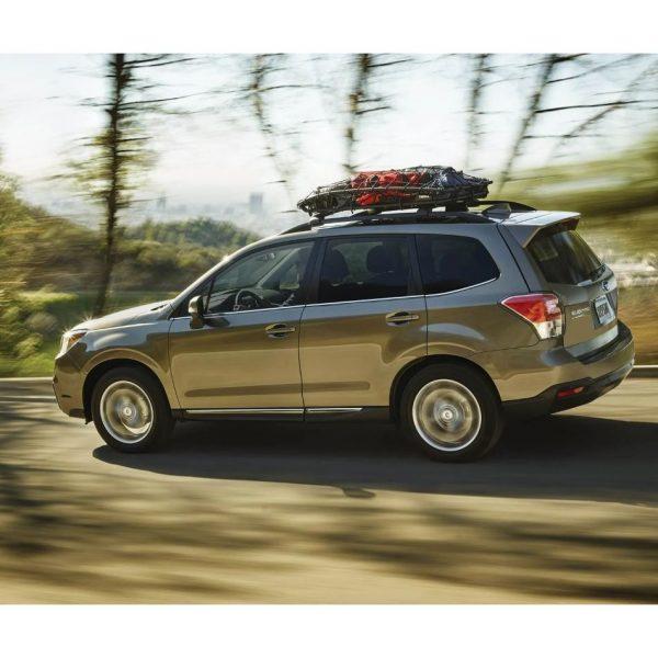 Thule Canyon XT 859 е най-новият модел багажник за напречни греди - скара / решетка за таван от здрава стомана и спортен вид за насипен багаж за кола, джип, сув, сафари или леко товарен автомобил